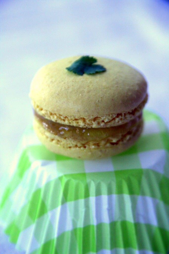 Macaron à la coriandre