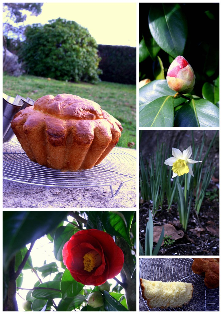 Brioche à la fleur d'oranger