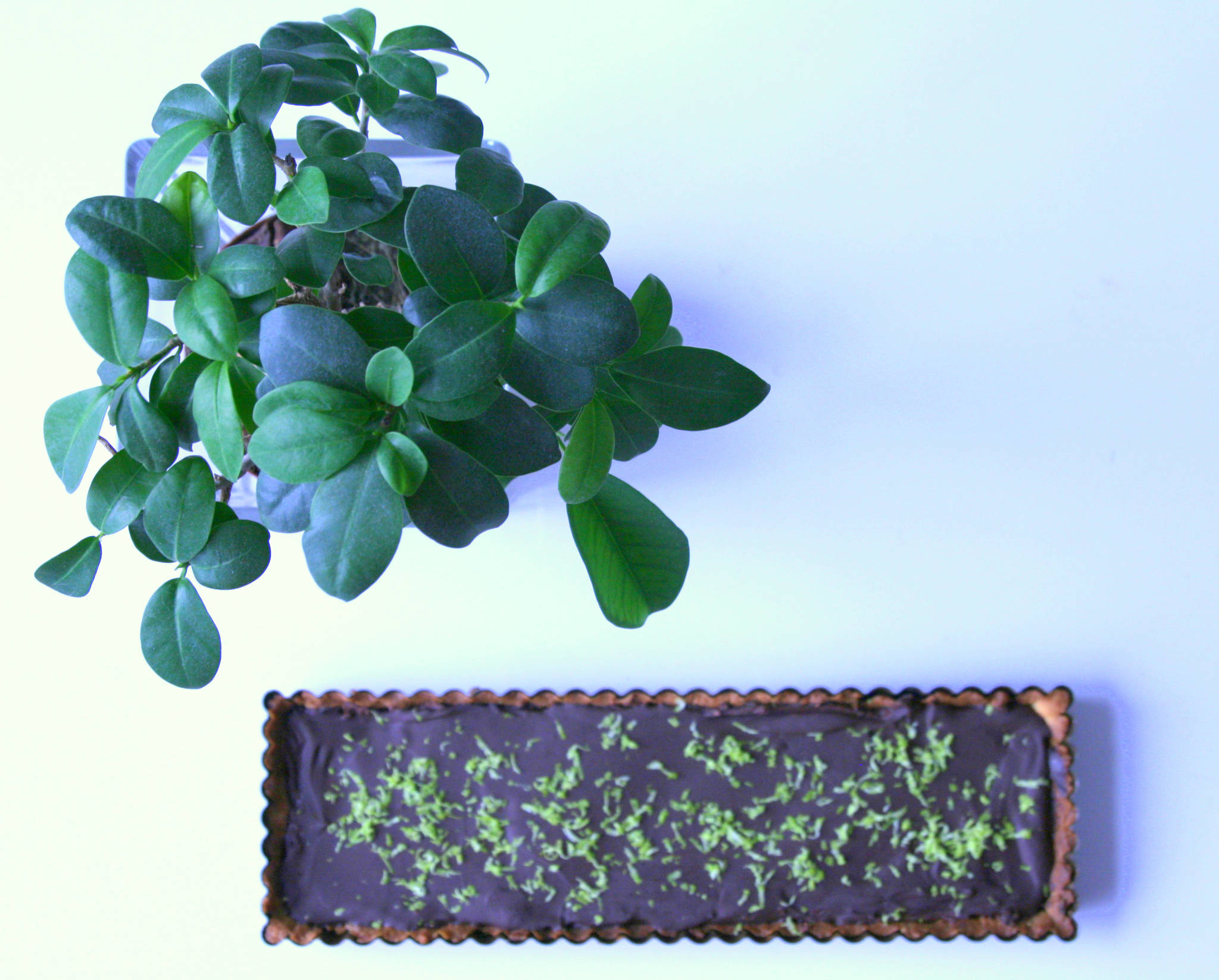 Tarte au chocolat et tonka, touche de citron vert