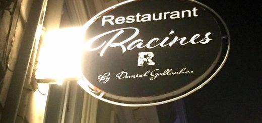 Racines à Bordeaux (33)
