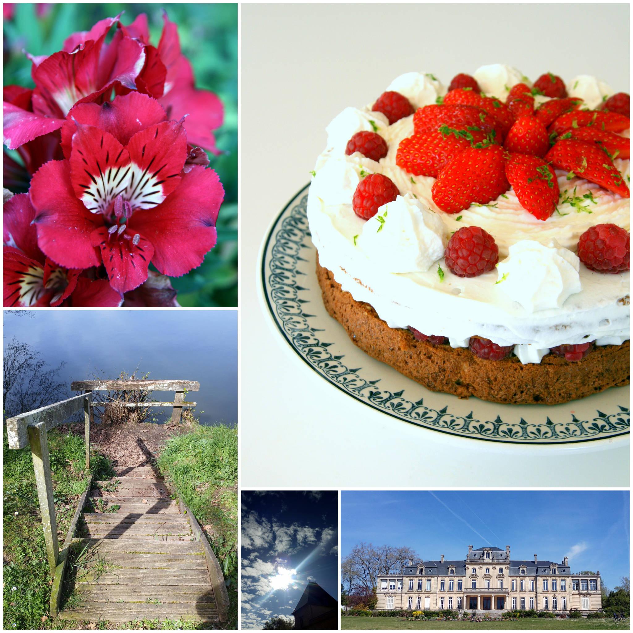 Gâteau moelleux fraises et framboises
