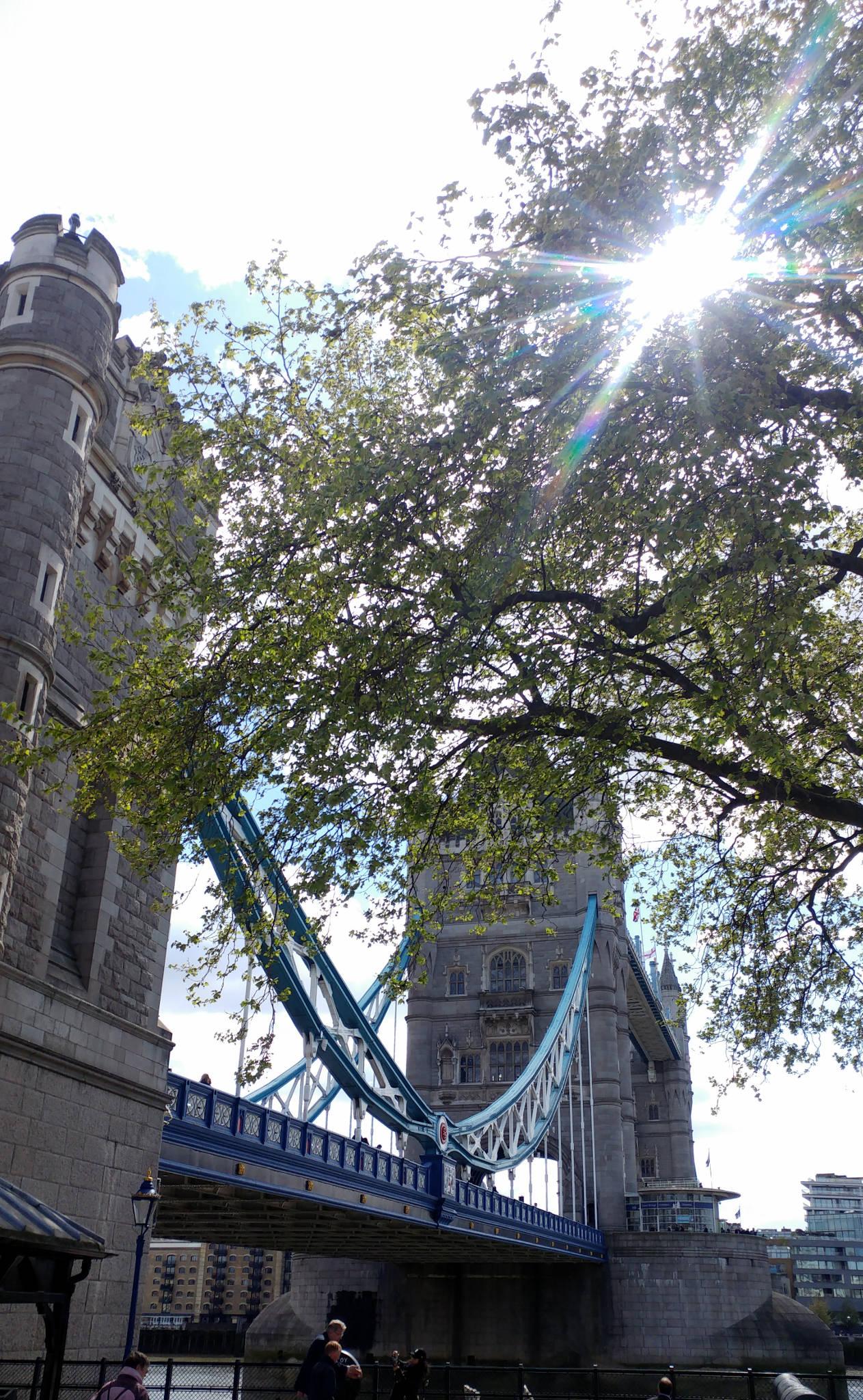 The Market Porter à Londres (GB)