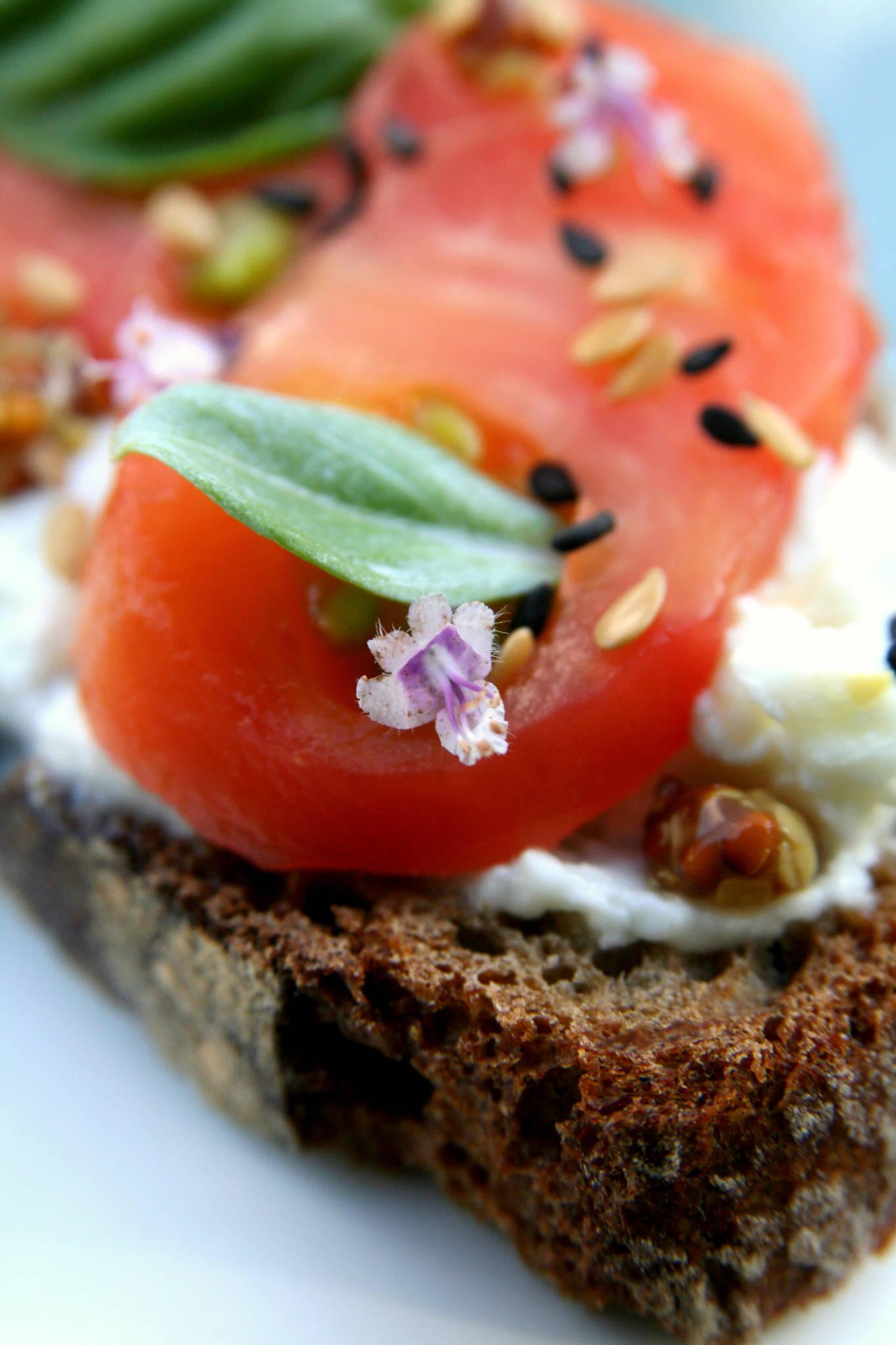 Tartine de brebis à la tomate et aux herbes du jardin