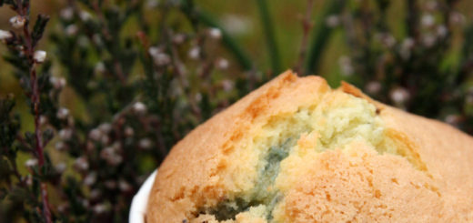 Muffins aux myrtilles