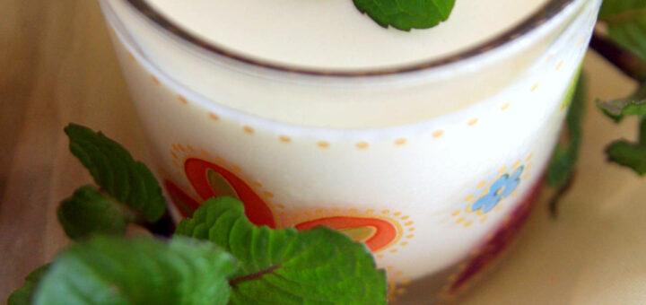 Panna cotta au thé vert à la menthe