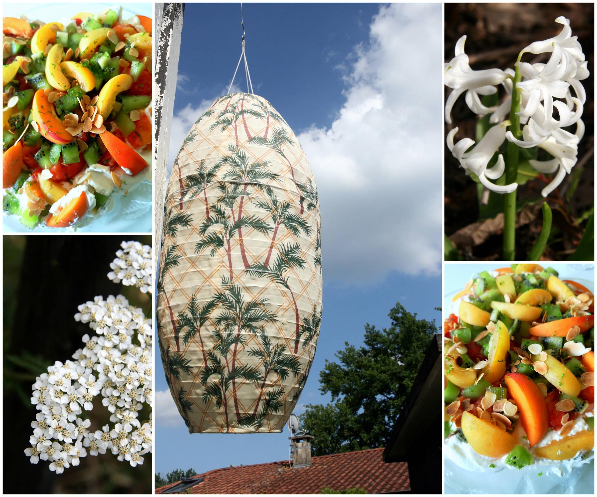 Pavlova aux abricots, aux pêches et aux kiwis